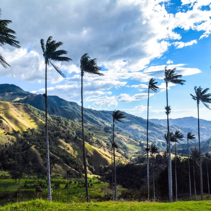Hills in Colombia